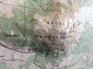 Mauna Kea Relief Map