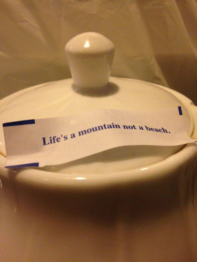 Life's a Mountain