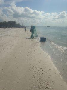 seashore5