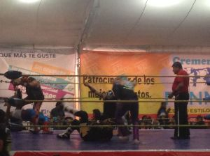 luchalibre4